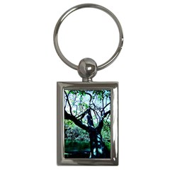 Highland Park 11 Key Chains (rectangle)