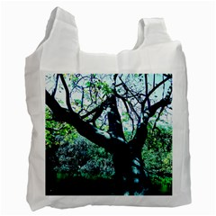 Highland Park 11 Recycle Bag (two Side)