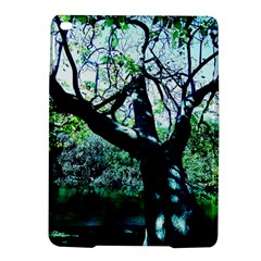 Highland Park 11 Ipad Air 2 Hardshell Cases