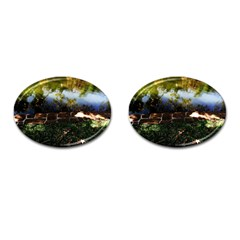 Highland Park 10 Cufflinks (oval)