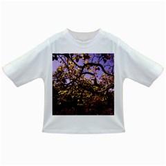 Highland Park 9 Infant/toddler T Shirts