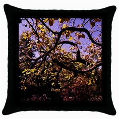 Highland Park 9 Throw Pillow Case (black)