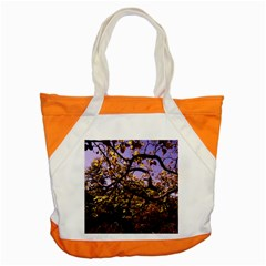 Highland Park 9 Accent Tote Bag