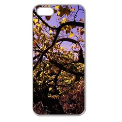 Highland Park 9 Apple Seamless Iphone 5 Case (clear)