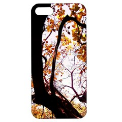 Highland Park 8 Apple Iphone 5 Hardshell Case With Stand