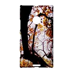 Highland Park 8 Nokia Lumia 1520