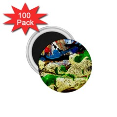 Catalina Island Not So Far 4 1 75  Magnets (100 Pack)