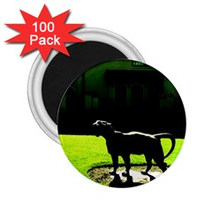 Guard 3 2 25  Magnets (100 Pack)