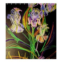 Dscf1378   Irises On The Black Shower Curtain 66  X 72  (large)  by bestdesignintheworld