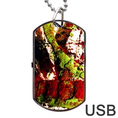 Collosium   Swards And Helmets 4 Dog Tag Usb Flash (two Sides) by bestdesignintheworld