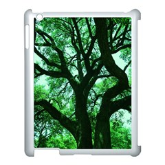 Lake Park 3 Apple Ipad 3/4 Case (white) by bestdesignintheworld