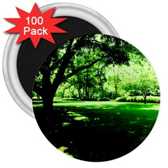Lake Park 14 3  Magnets (100 Pack) by bestdesignintheworld