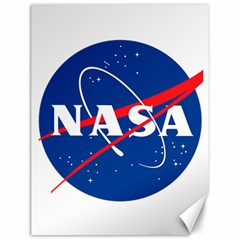 Nasa Logo Canvas 12  X 16