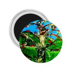Coral Tree 2 2 25  Magnets