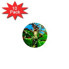 Coral Tree 2 1  Mini Magnet (10 Pack)