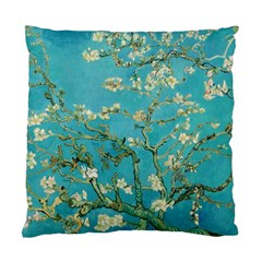 Almond Blossom  Standard Cushion Case (one Side)