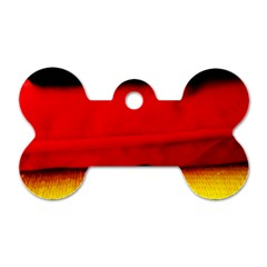 Colors And Fabrics 7 Dog Tag Bone (two Sides)