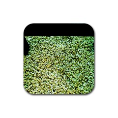 Colors And Fabrics 26 Rubber Square Coaster (4 Pack)