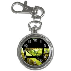 Colors And Fabrics 25 Key Chain Watches