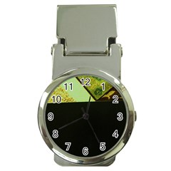 Colors And Fabrics 24 Money Clip Watches