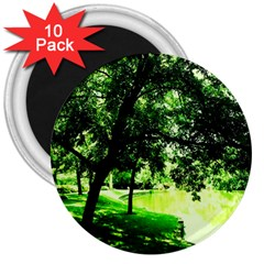 Lake Park 17 3  Magnets (10 Pack)  by bestdesignintheworld
