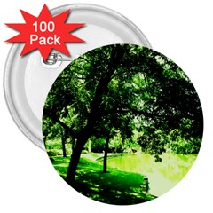 Lake Park 17 3  Buttons (100 Pack)