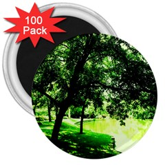Lake Park 17 3  Magnets (100 Pack) by bestdesignintheworld