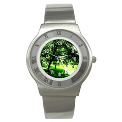 Lake Park 17 Stainless Steel Watch