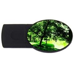 Lake Park 17 Usb Flash Drive Oval (4 Gb)