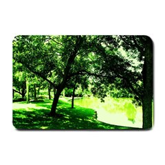 Lake Park 17 Small Doormat