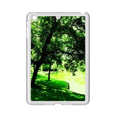 Lake Park 17 Ipad Mini 2 Enamel Coated Cases