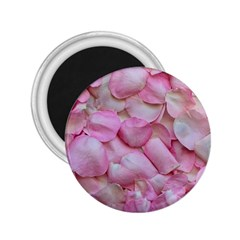 Romantic Pink Rose Petals Floral  2 25  Magnets