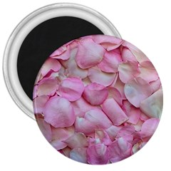 Romantic Pink Rose Petals Floral  3  Magnets