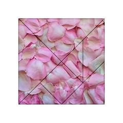 Romantic Pink Rose Petals Floral  Acrylic Tangram Puzzle (4  X 4 )