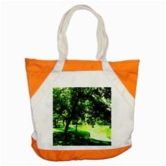 Lake Park 17 Accent Tote Bag