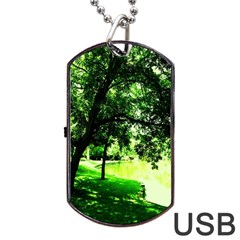 Lake Park 17 Dog Tag Usb Flash (two Sides)