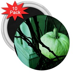 Pumpkin 7 3  Magnets (10 Pack)