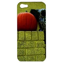 Pumpkins 10 Apple Iphone 5 Hardshell Case