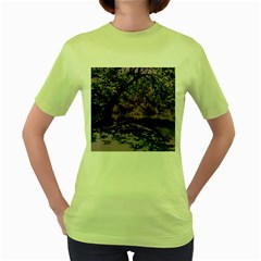 Old Tree 6 Women s Green T Shirt