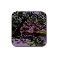 Old Tree 6 Rubber Square Coaster (4 Pack)