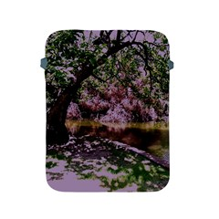 Old Tree 6 Apple Ipad 2/3/4 Protective Soft Cases