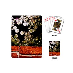 Highland Park 4 Playing Cards (mini)