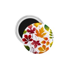 Beautiful Autumn Leaves Vector 1 75  Magnets