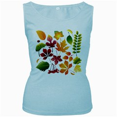 Beautiful Autumn Leaves Vector Women s Baby Blue Tank Top