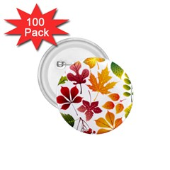 Beautiful Autumn Leaves Vector 1 75  Buttons (100 Pack)