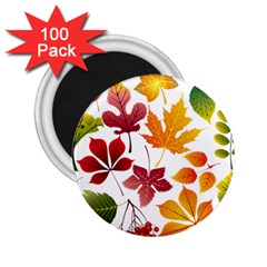 Beautiful Autumn Leaves Vector 2 25  Magnets (100 Pack)