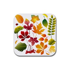 Beautiful Autumn Leaves Vector Rubber Coaster (square)