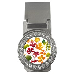 Beautiful Autumn Leaves Vector Money Clips (cz)