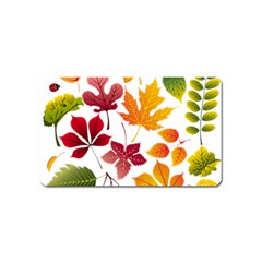 Beautiful Autumn Leaves Vector Magnet (name Card)
