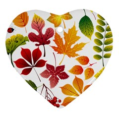 Beautiful Autumn Leaves Vector Heart Ornament (two Sides)